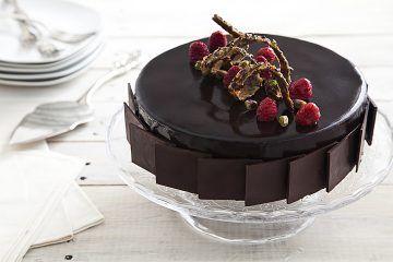 עוגת מוס שוקולד, פיסטוק ופטל | צילום: אסף אמברם