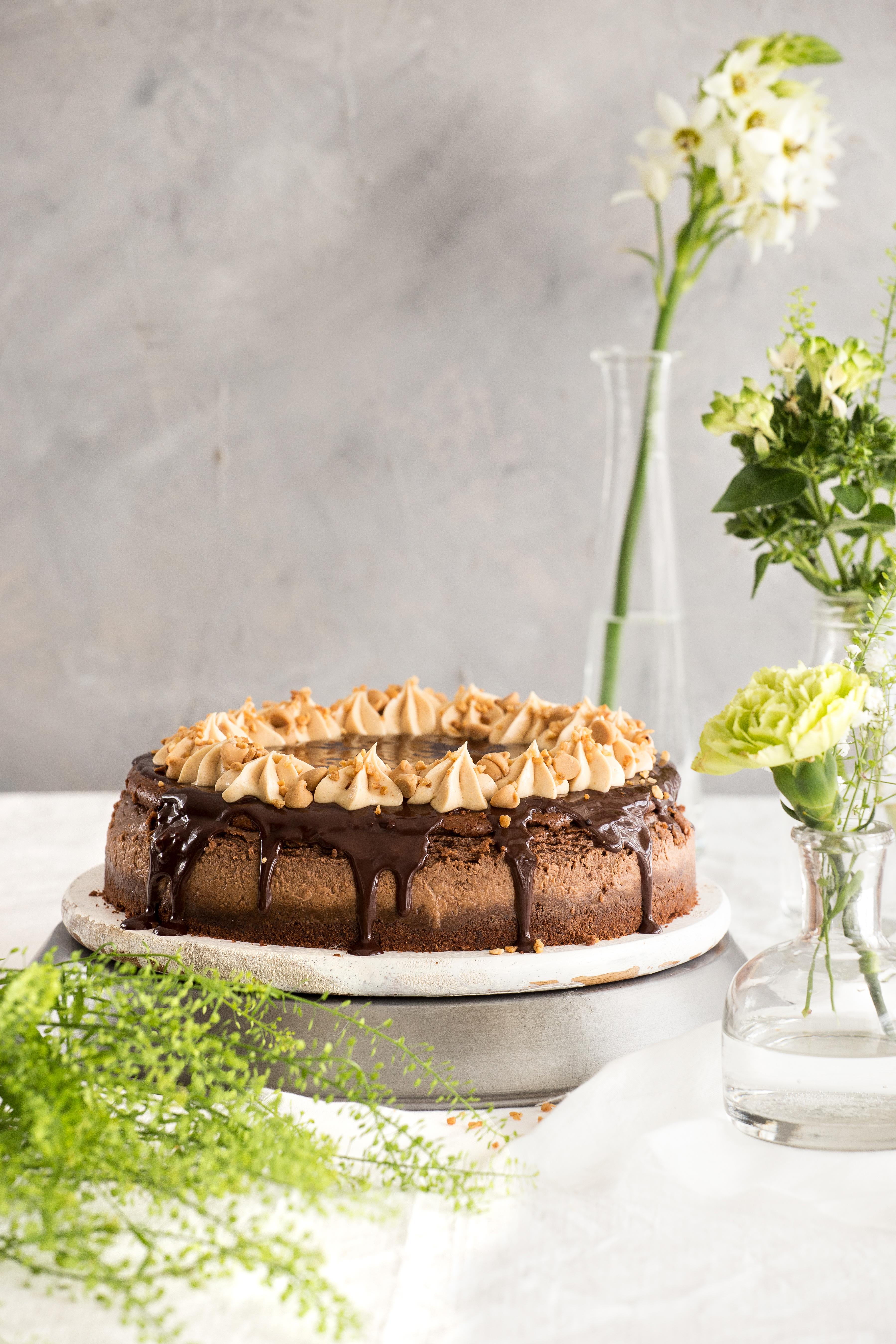עוגת גבינה שוקולדית עם קרם חמאת בוטנים