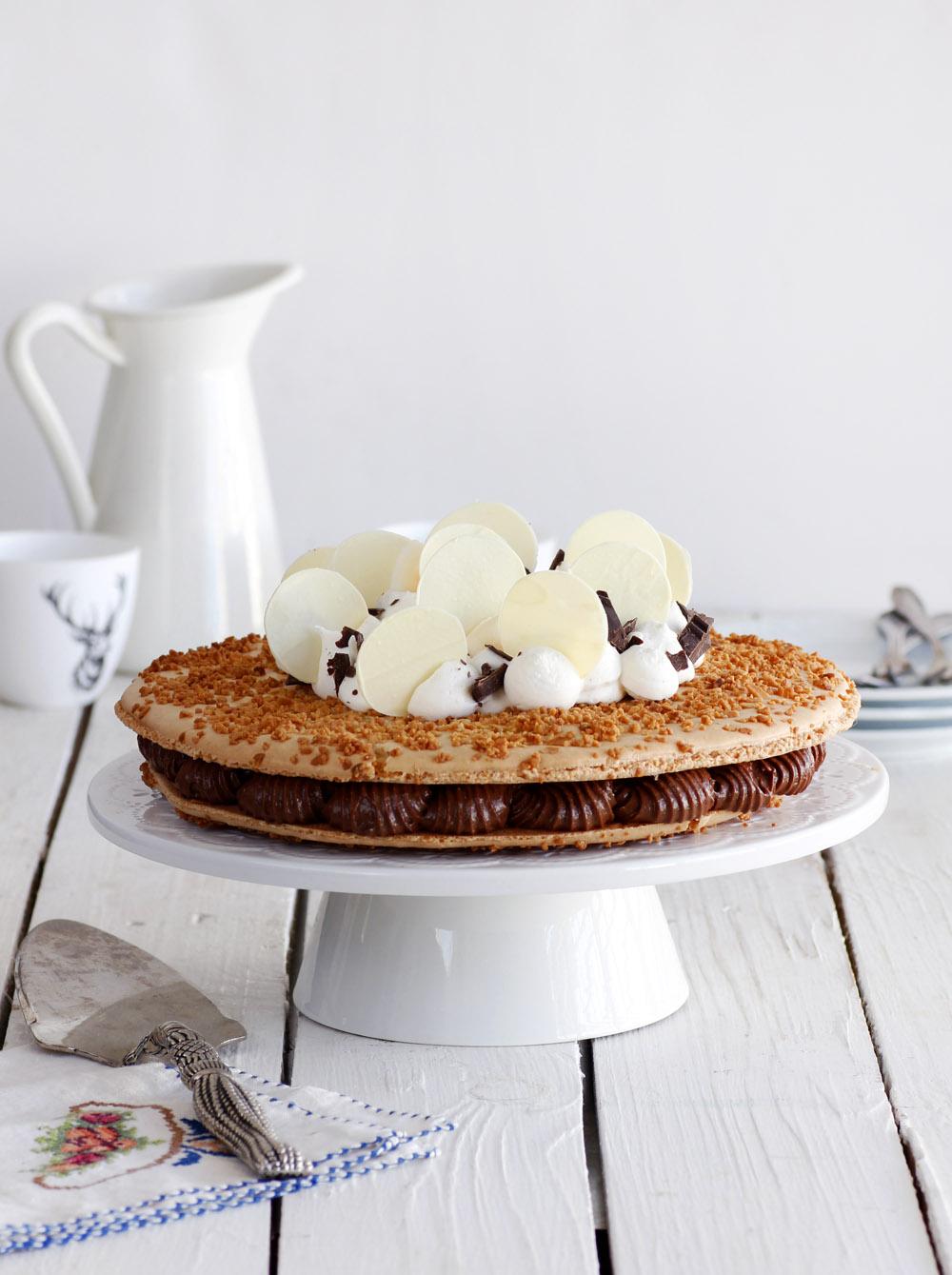 Coconut and Chocolate Macaroon Cake