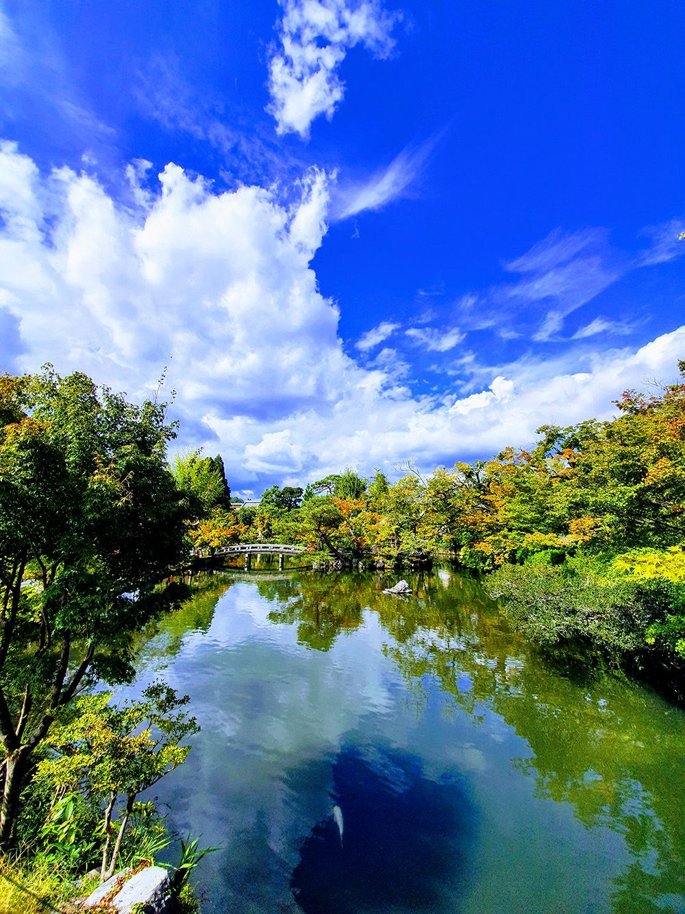 הגנים במקדש Honen-in בקיוטו